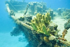 Ship Wreck St. Lucia